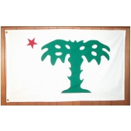 South Carolina Palmeto Guard Flag