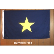 Burnett-National Standard of Texas Flag